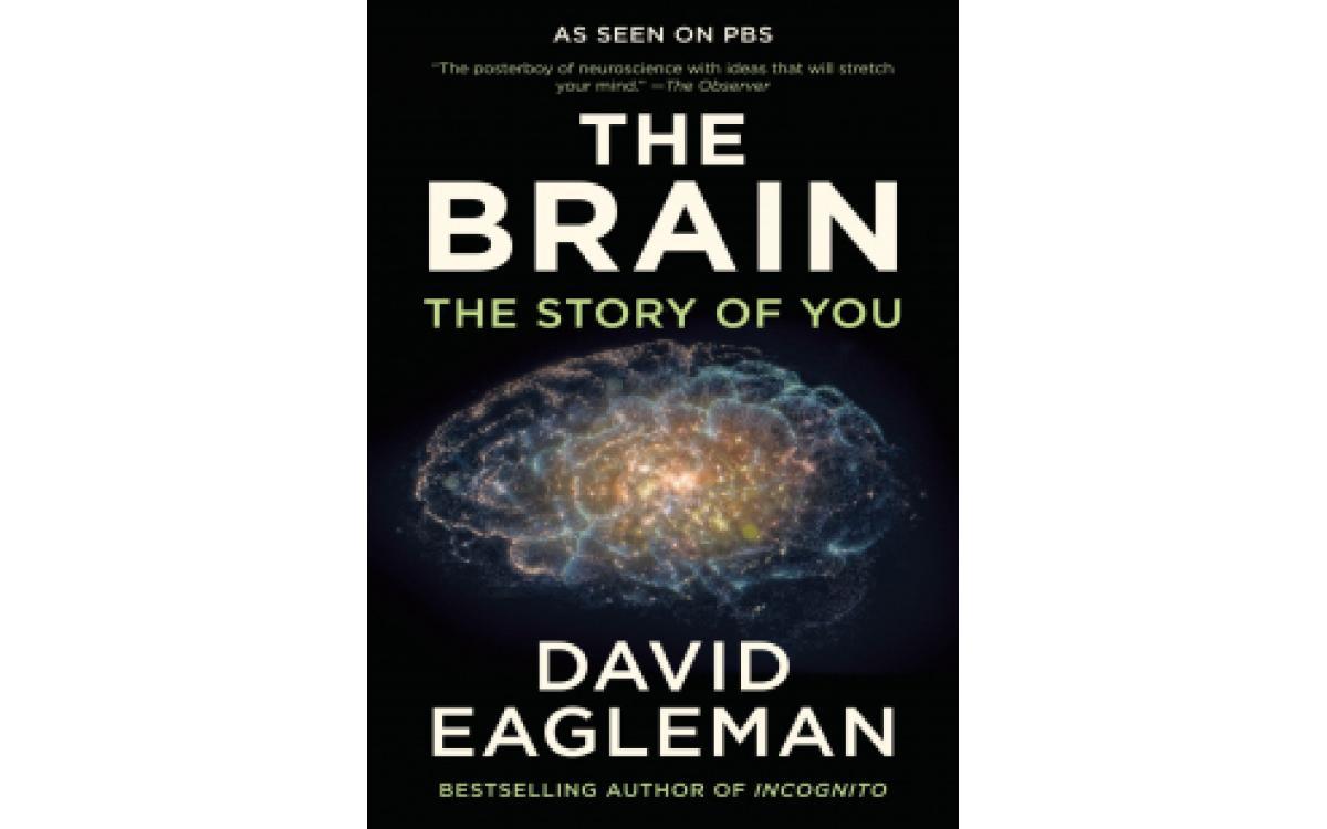 The Brain - David Eagleman [Tóm tắt]